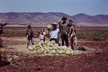 ... , Mis amigos cojiendo melones muy ricos en Sierra de Yeguas !1965